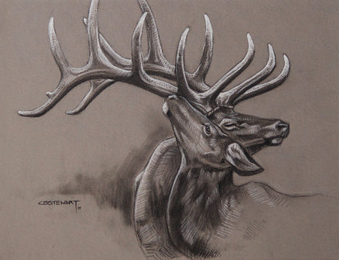 Elk Original Sketch