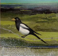 """Magpie"" SOLD"
