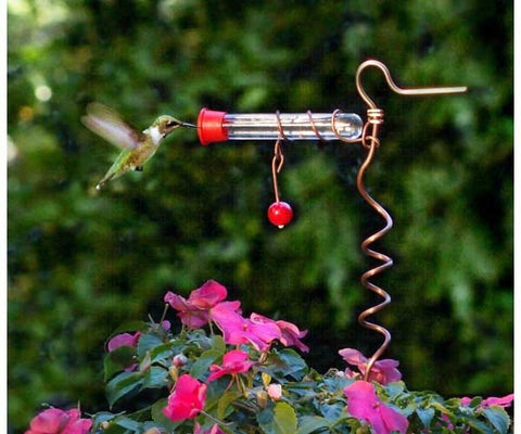 Humming Bird Feeder Plant Stake