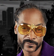 Snoop Dogg in the I'll Be Rich Forever Bee Sunglasses in Cali Chrome Yellow  SUNNIES + OPTICS Sunglasses Collection, Tnemnroda man- NRODA