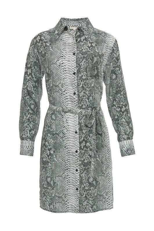 Python Shirt Dress