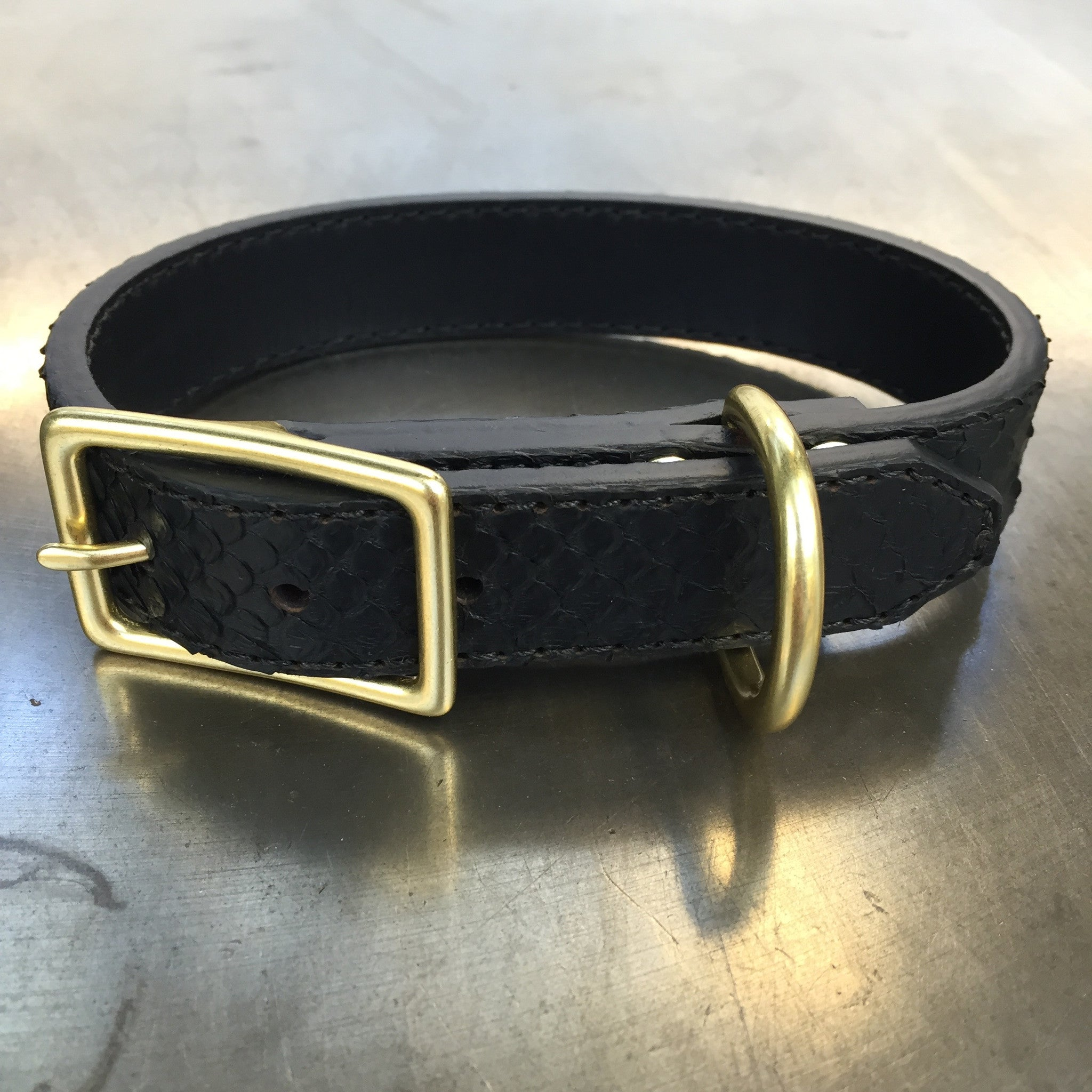 Black Python Dog Collar