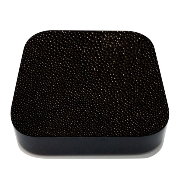 Stingray Apple TV Leather Cover