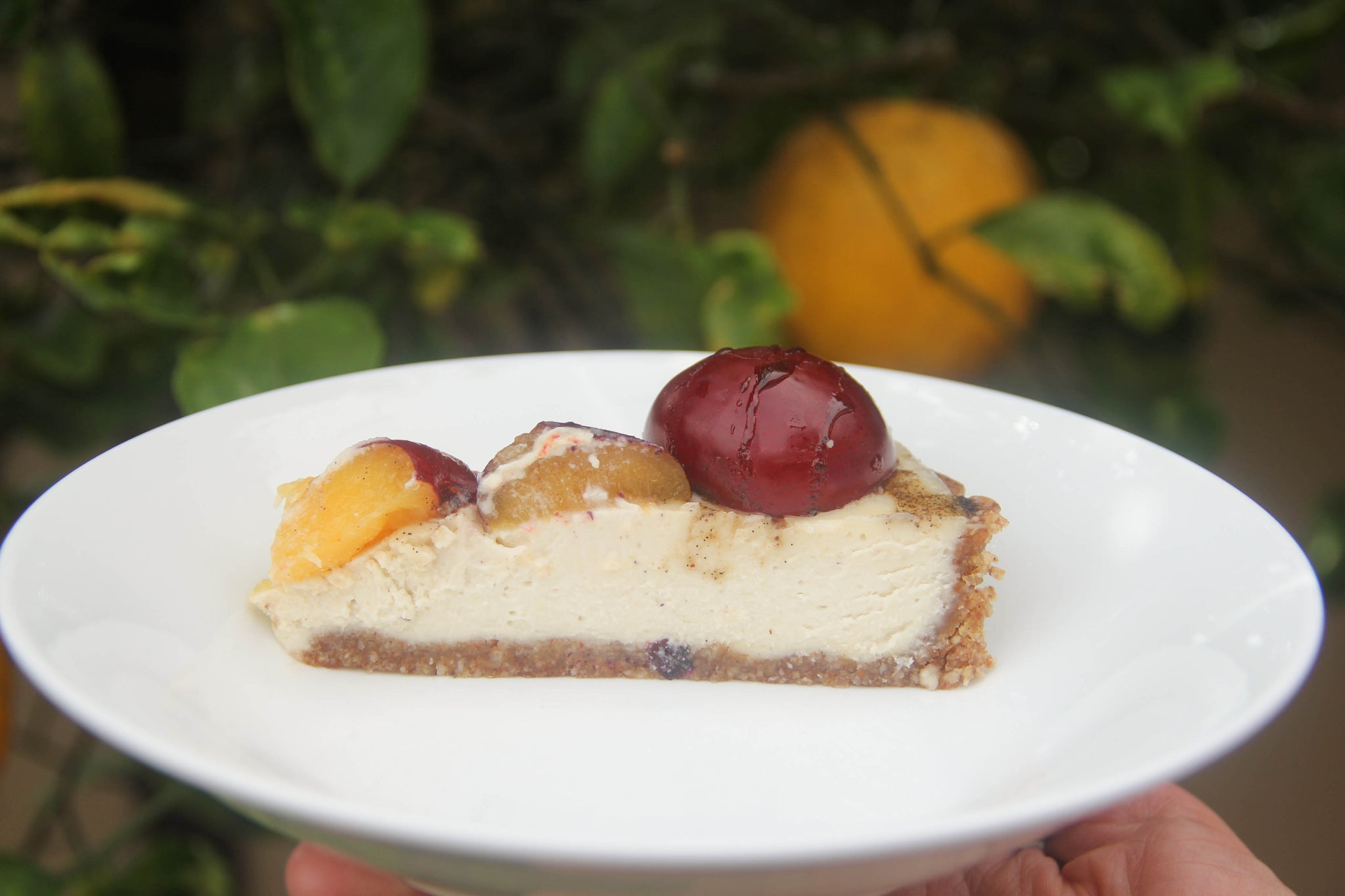 30-minute luscious Fresh Plum Tart #healthy #vegan #plum #tart #recipe #dairyfree #sugarfree #glutenfree #begoodorganics