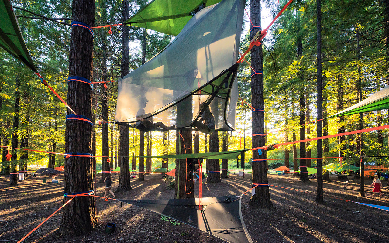 How to Create the Famous Tentsile Stack