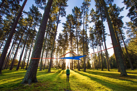 Flite+ Tree Tent & Tentsile Tree Tents - The Best Camping Hammock Tents for Sale Online