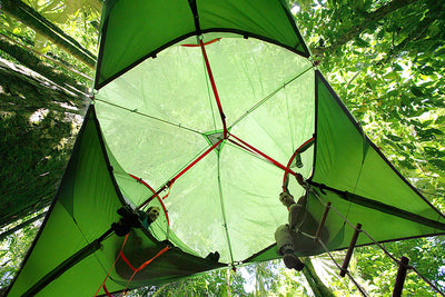 Trilogy 6-Person Super Tree Tent (3.0)