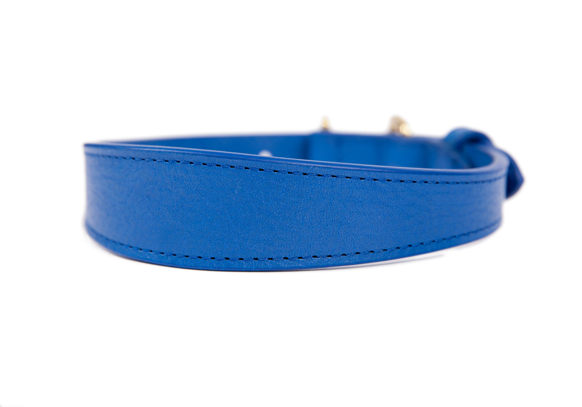 Large Leather Dog Collar Electric Blue