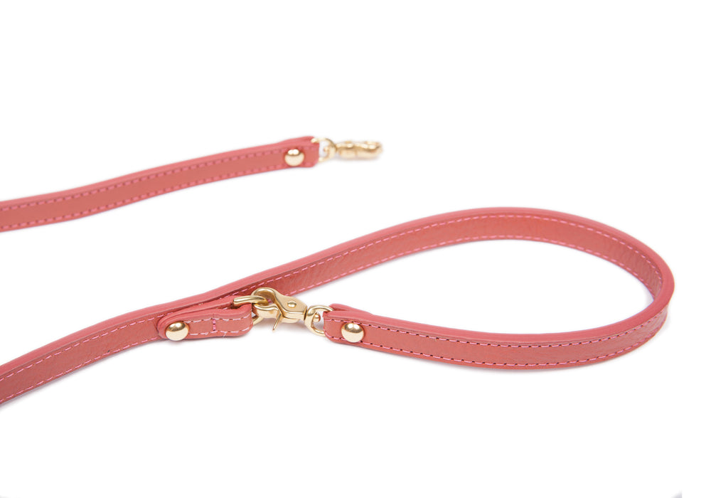 Mini Leather Dog Leash Rosewood