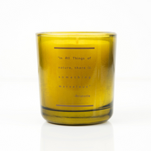 Oakmoss, Cypress, & Vetiver - Everyday Collection - Botanical Candle