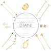 Trunk Show at Diani in Santa Barbara!