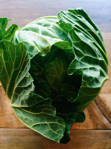 Cabbage, Green