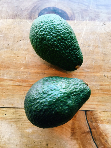 Avocado 'Hass'
