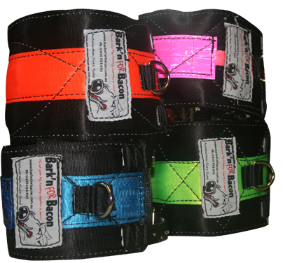Seat Belt / Kevlar Neck Collars