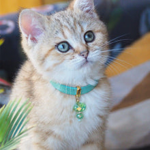 Load image into Gallery viewer, Minty Kitten Collar