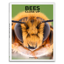 Load image into Gallery viewer, Bees Close Up