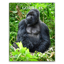 Load image into Gallery viewer, Gorillas