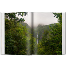 Load image into Gallery viewer, Rainforests in South America