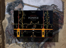 Load image into Gallery viewer, Fausto & Felice Niccolini. The Houses and Monuments of Pompeii