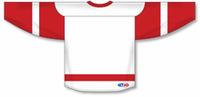Load image into Gallery viewer, 2007 DETROIT WHITE Taper Neck With Underlay Blank Hockey Jerseys