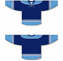 Load image into Gallery viewer, 2010 FLORIDA 3RD NAVY Pro Blank Hockey Jerseys
