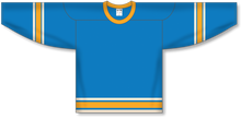 Load image into Gallery viewer, 2016 ST. LOUIS WINTER CLASSIC BLUE Pro Blank Hockey Jerseys