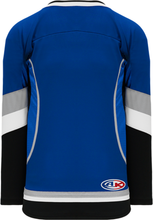 Load image into Gallery viewer, 2009 TAMPA BAY 3RD ROYAL Piping Pro Blank Hockey Jerseys