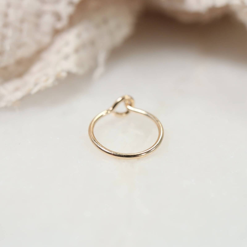 plain gold hook nose ring