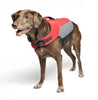 Astral Designs: Bird Dog (K9 PFD) Red