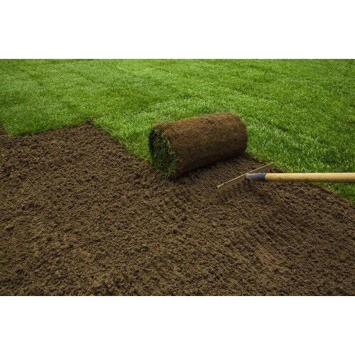 "Kentucky Blue Grass SOD 24""×54"" #9901"