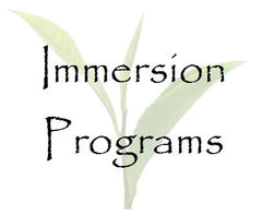 Immersion Programs