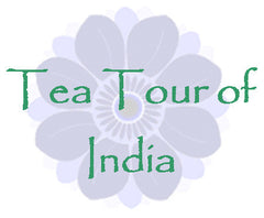Tea Tour of India