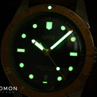 Sixty Five Bronze - Leather - 40mm - Ref. 01 733 7707 4355-07 5 20 45