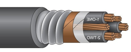 EXANE VFD POWER CABLE ARMORED