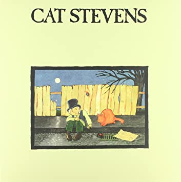 LP Stevens, Cat - Teaser and the Firecat