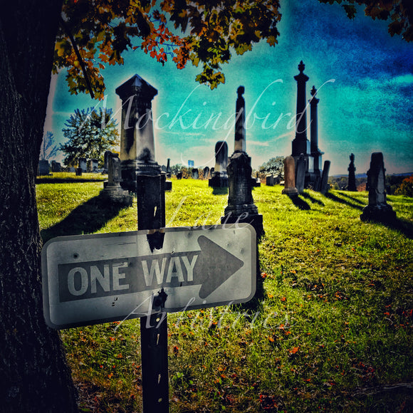 One Way Matted Photograph
