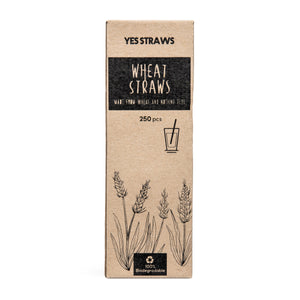 Wheat Straws - Long (Pack of 250)