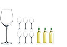 Rona White Wine Glasses & Sauvignon Wine Set