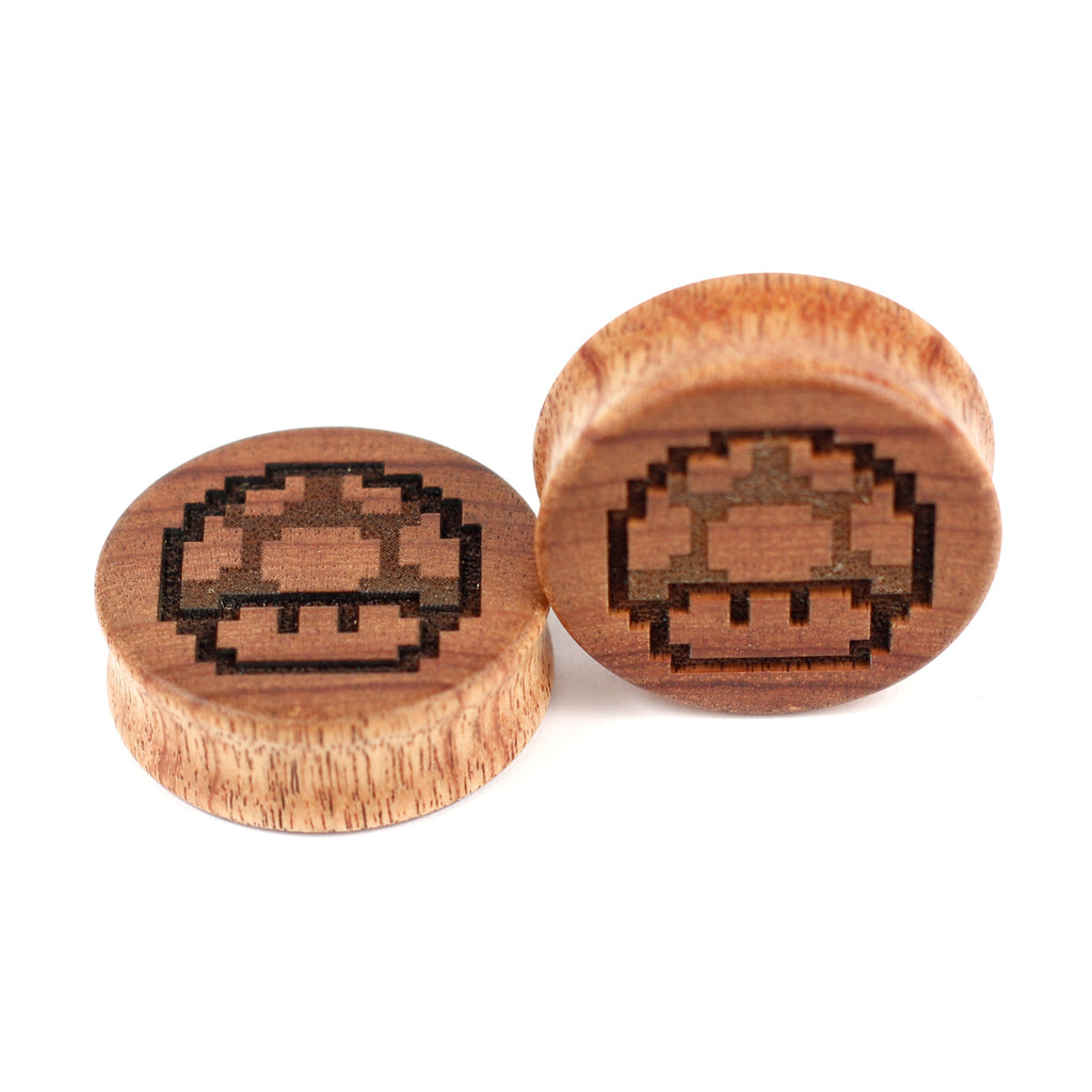 1up-CA - BC Plugs