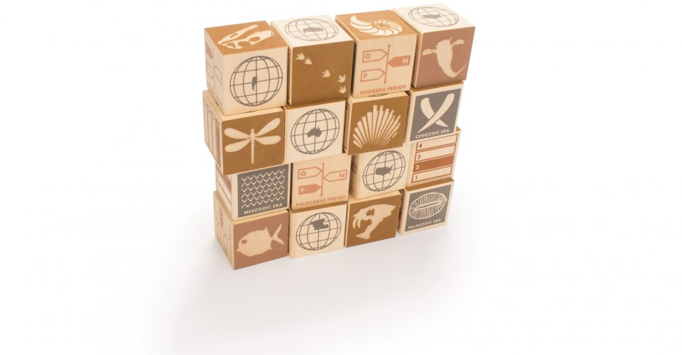 Wooden Blocks | Fossils - 16pc