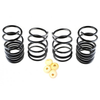 "Racecomp Engineering ""Regular Guy"" Black Lowering Springs - Subaru STI VA"