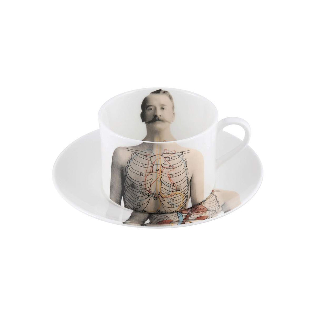 The New English:Anatomica Coffee Cup & Saucer