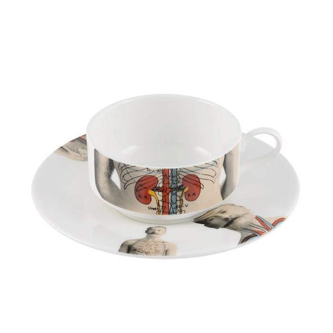 The New English:Anatomica Mocha Cup & Saucer