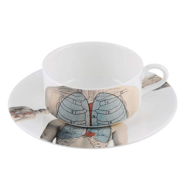 The New English:Anatomica Tea Cup & Saucer