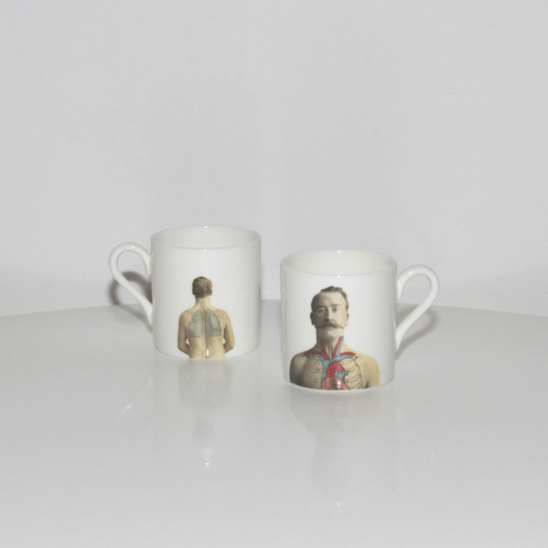 The New English:Anatomica OUTLET Espresso Cup only (Set of 2)