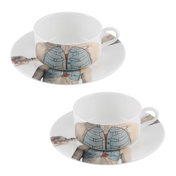 The New English:Anatomica Teacup & Saucer Set x2