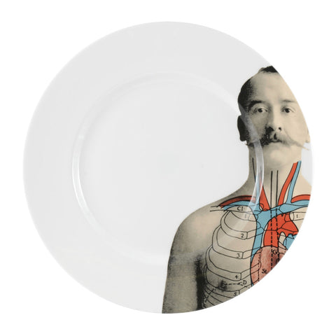 The New English:Anatomica Dinner Plate