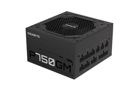Gigabyte P750GM 80 Pluse Gold PSU-computerspace
