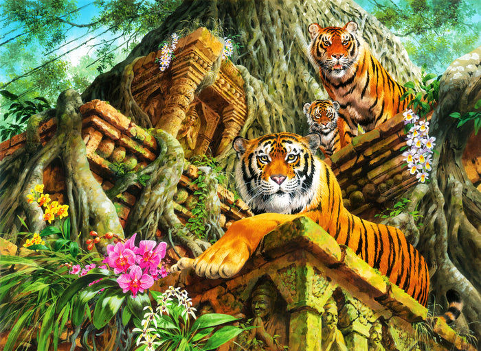 Temple Tigers