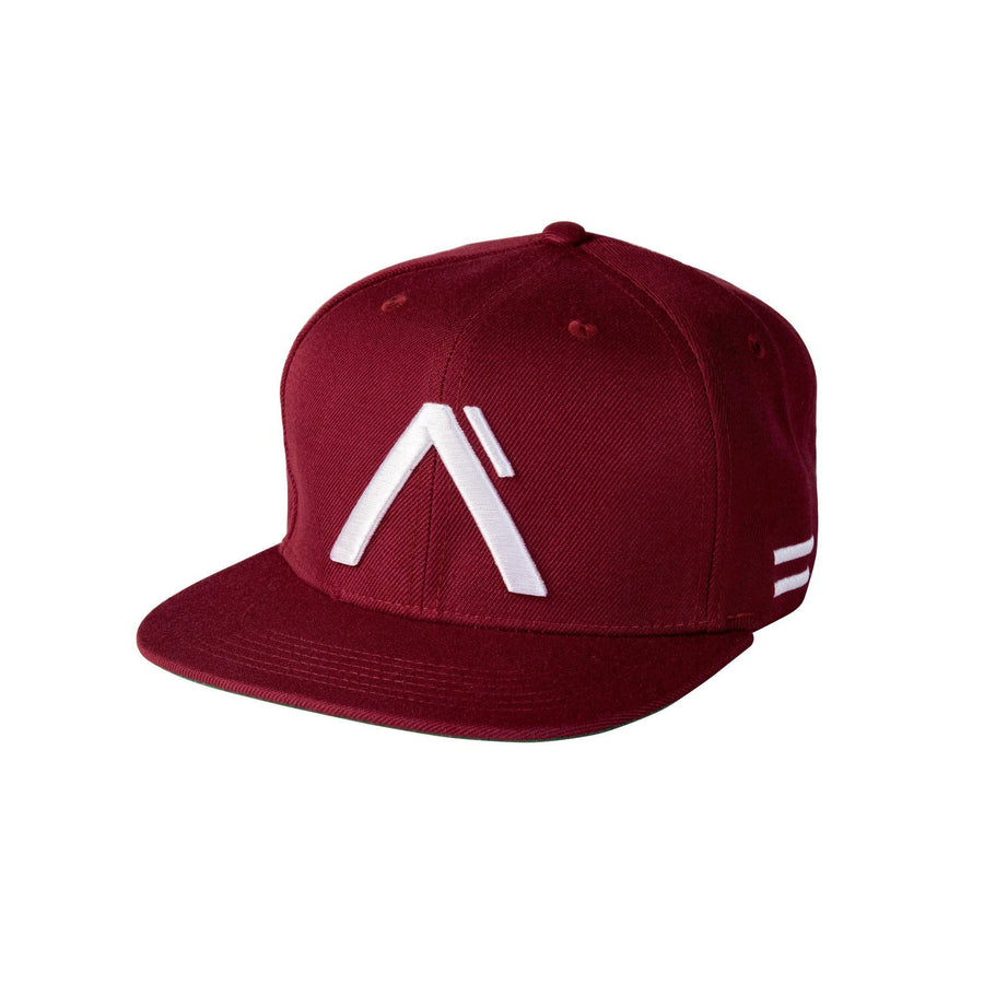 The Levels Snapback - Maroon/Silver